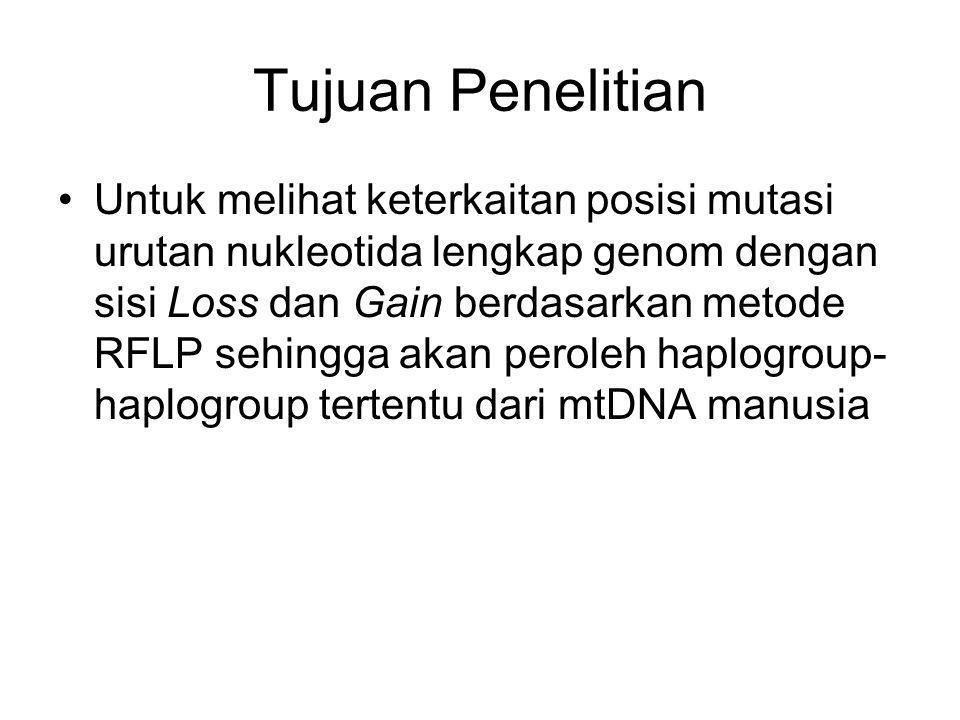 Tujuan Penelitian Untuk melihat keterkaitan posisi mutasi urutan nukleotida lengkap genom dengan sisi Loss dan Gain berdasarkan metode RFLP sehingga akan peroleh haplogroup- haplogroup tertentu dari mtDNA manusia