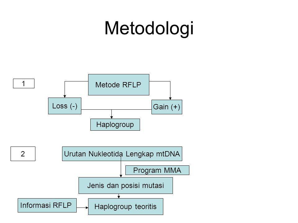 Metodologi Metode RFLP Loss (-) Gain (+) Haplogroup Urutan Nukleotida Lengkap mtDNA Informasi RFLP Jenis dan posisi mutasi Haplogroup teoritis Program