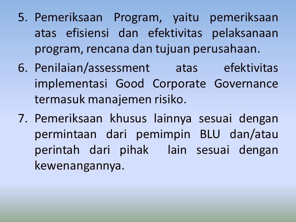 5.Pemeriksaan Program, yaitu pemeriksaan atas efisiensi dan efektivitas pelaksanaan program, rencana dan tujuan perusahaan. 6.Penilaian/assessment ata