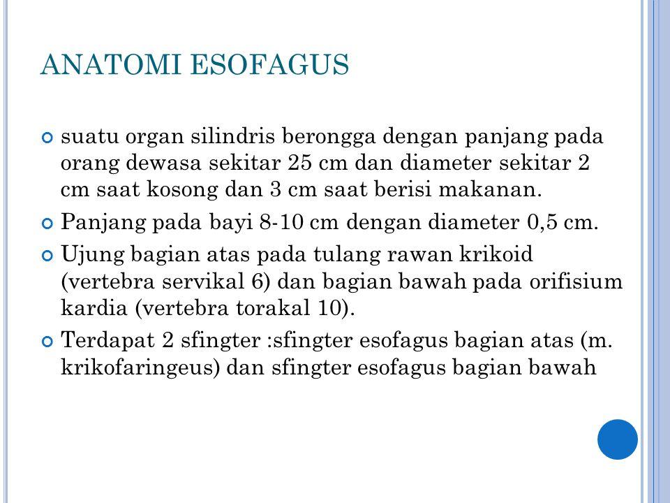 ANATOMI ESOFAGUS suatu organ silindris berongga dengan panjang pada orang dewasa sekitar 25 cm dan diameter sekitar 2 cm saat kosong dan 3 cm saat ber