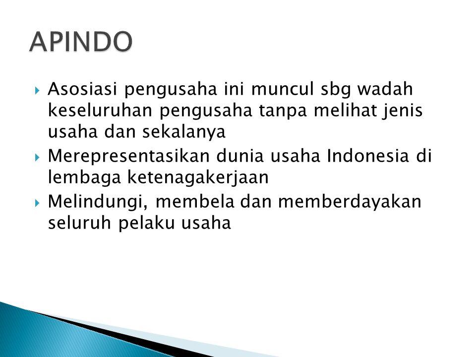  Asosiasi pengusaha ini muncul sbg wadah keseluruhan pengusaha tanpa melihat jenis usaha dan sekalanya  Merepresentasikan dunia usaha Indonesia di l