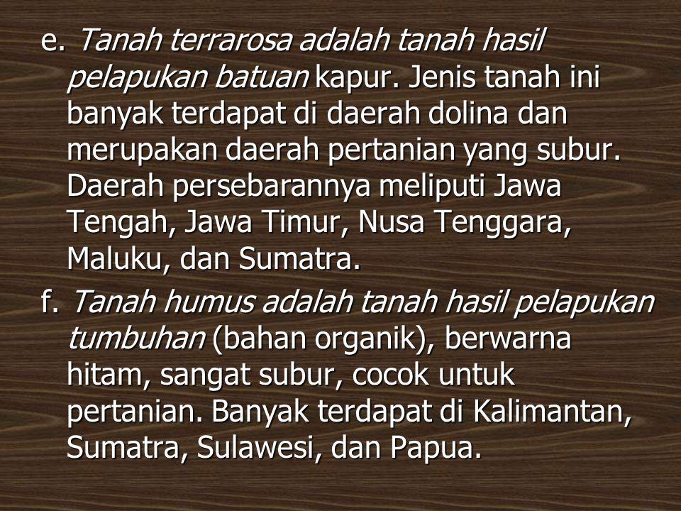 c. Tanah kapur (renzina) adalah tanah yang terbentuk dari bahan induk kapur yang mengalami laterisasi lemah. Banyak terdapat di Jawa Timur, Jawa Tenga