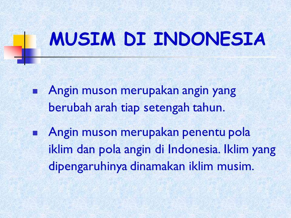 Jenis-jenis tanah di Indonesia a.