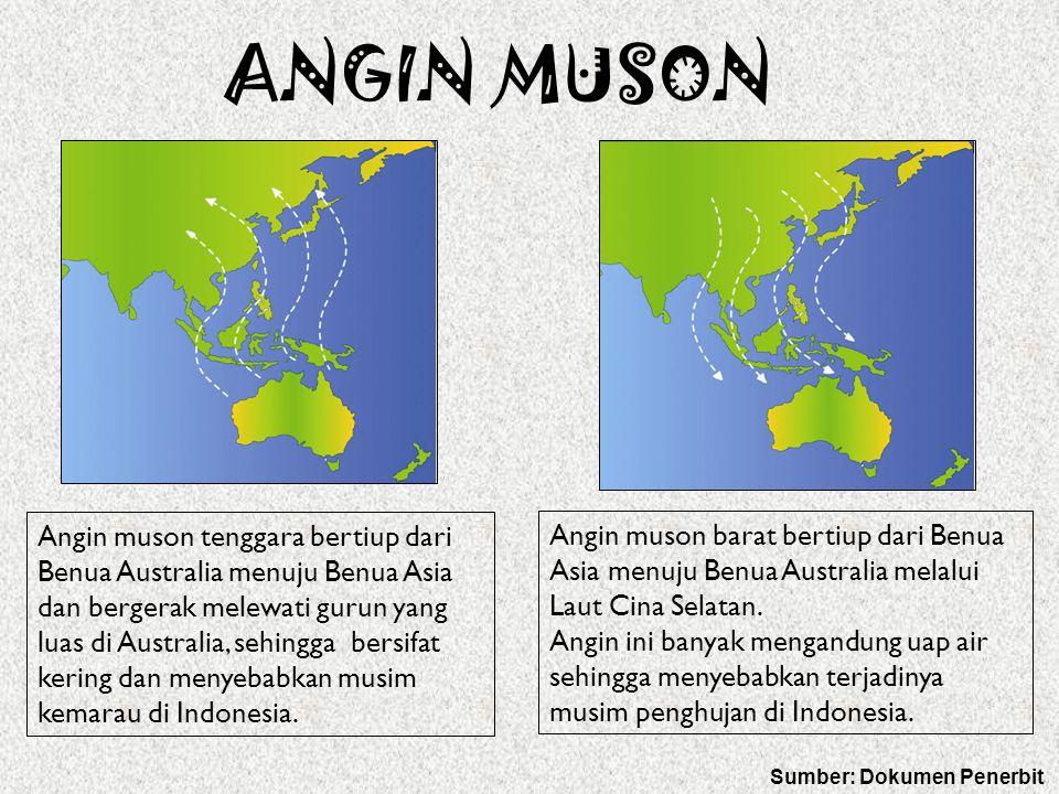 ANGIN MUSON Angin muson tenggara bertiup dari Benua Australia menuju Benua Asia dan bergerak melewati gurun yang luas di Australia, sehingga bersifat kering dan menyebabkan musim kemarau di Indonesia.