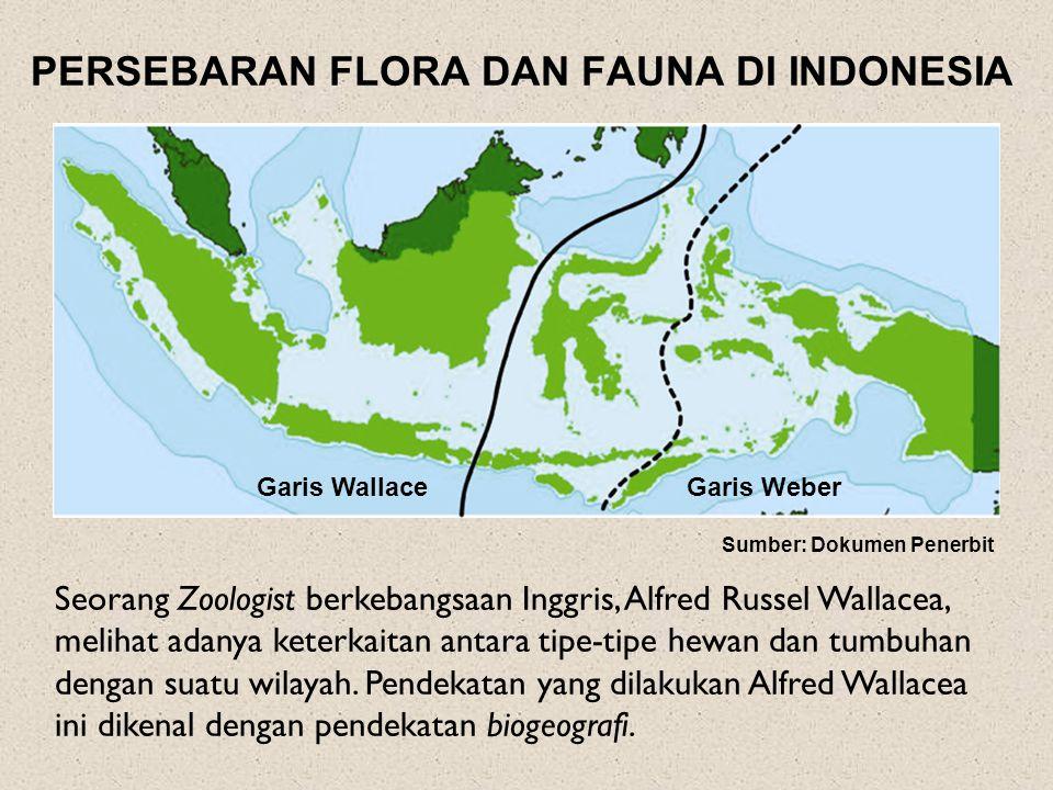 PERSEBARAN FLORA DAN FAUNA DI INDONESIA Seorang Zoologist berkebangsaan Inggris, Alfred Russel Wallacea, melihat adanya keterkaitan antara tipe-tipe hewan dan tumbuhan dengan suatu wilayah.
