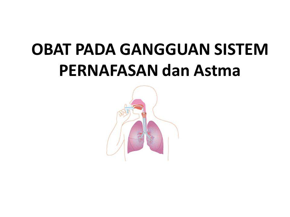 Infeksi saluran pernafasan atas (ISPA) termasuk flu, rinitis akut, sinusitis, tonsillitis akut dan laryngitis akut.