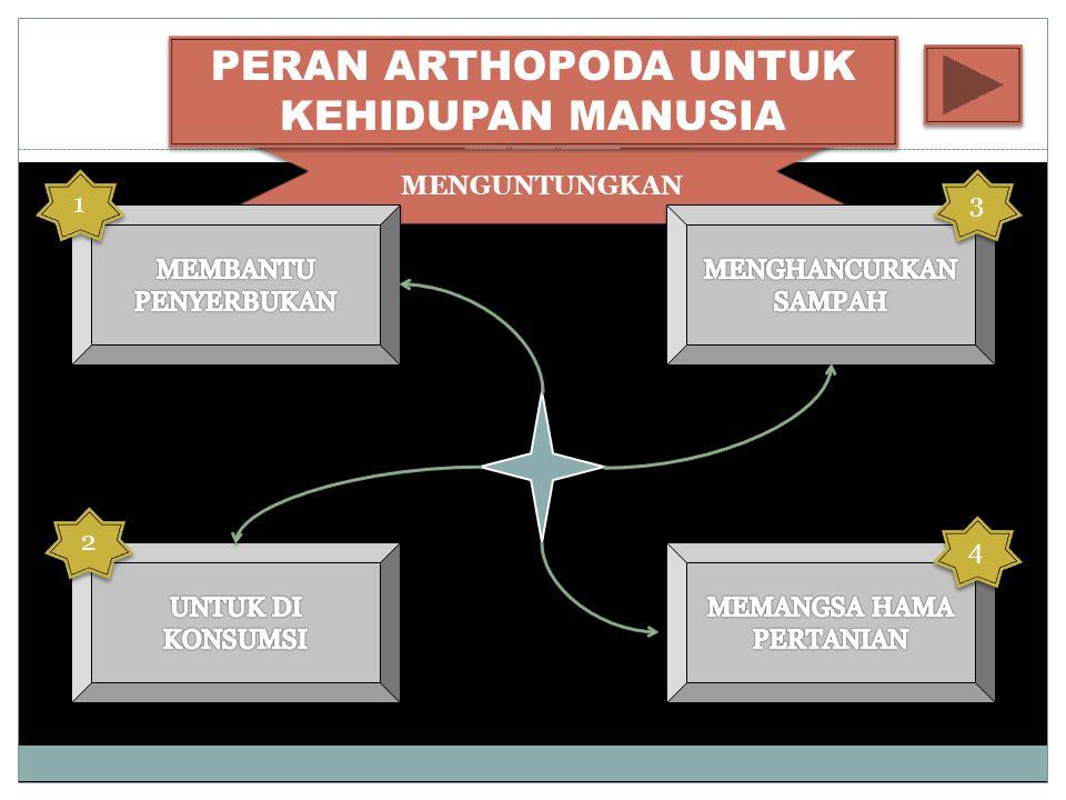 MENGUNTUNGKAN PERAN ARTHOPODA UNTUK KEHIDUPAN MANUSIA 4 4 3 3 1 1 2 2