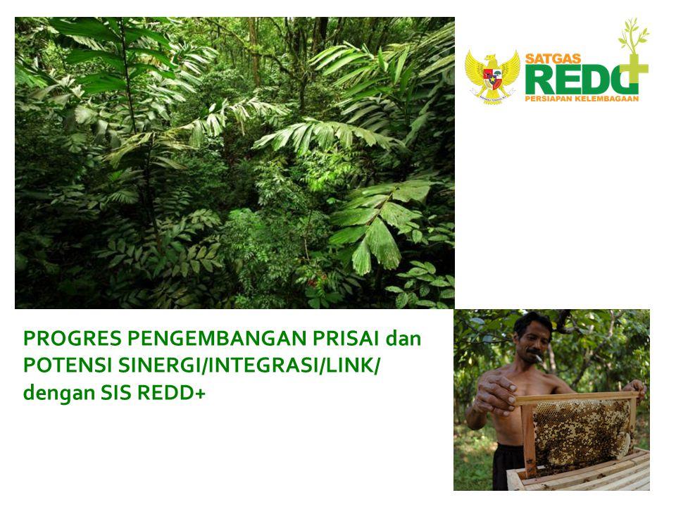 FREDDI: fund of funds. Pendanaan untuk REDD+ di Indonesia, FREDDI, adalah fund of funds.