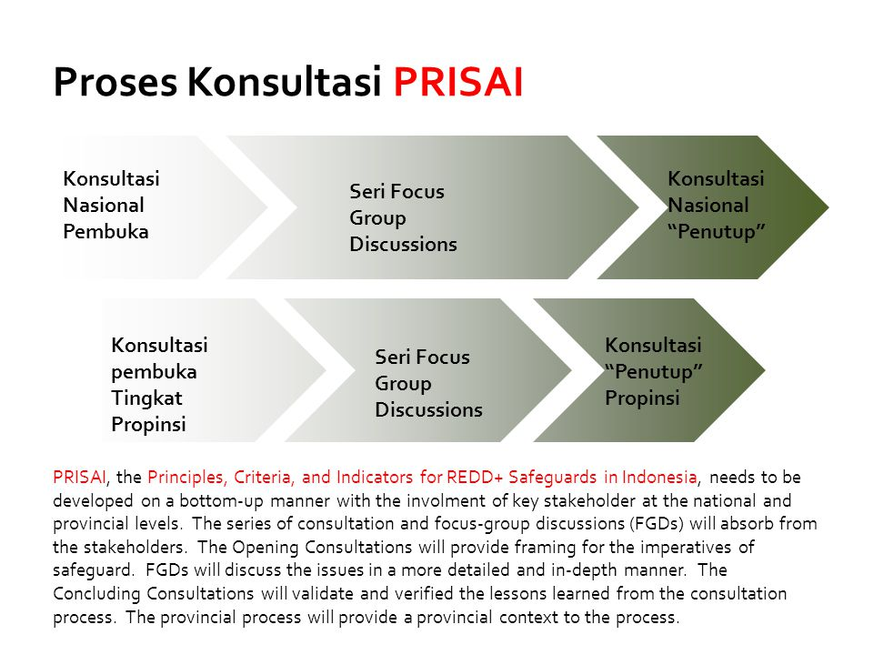 Proses Konsultasi PRISAI Konsultasi Nasional Pembuka Seri Focus Group Discussions Konsultasi Nasional Penutup Konsultasi pembuka Tingkat Propinsi Konsultasi Penutup Propinsi Seri Focus Group Discussions PRISAI, the Principles, Criteria, and Indicators for REDD+ Safeguards in Indonesia, needs to be developed on a bottom-up manner with the involment of key stakeholder at the national and provincial levels.