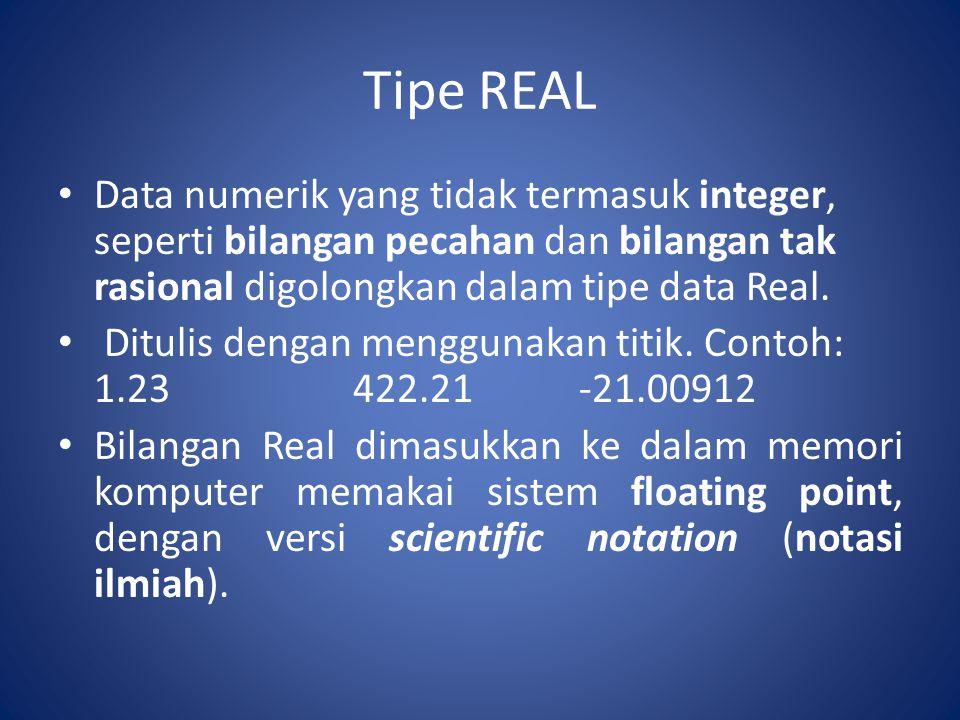 Tipe REAL Notasi ilmiah disajikan dalam 2 bagian, yaitu mantissa (pecahan) dan indeks.