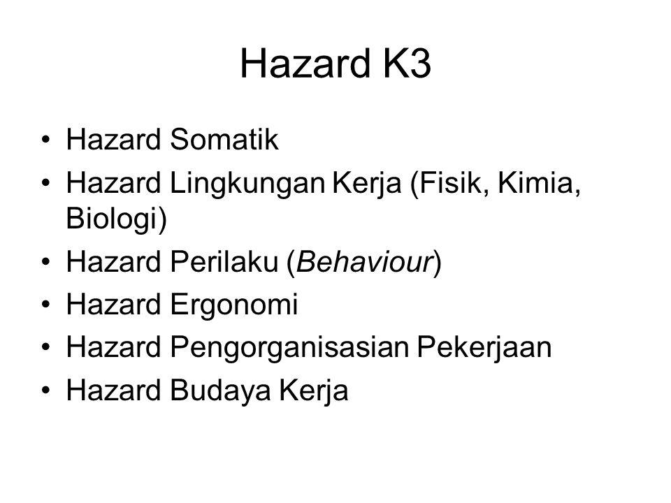 Hazard K3 Hazard Somatik Hazard Lingkungan Kerja (Fisik, Kimia, Biologi) Hazard Perilaku (Behaviour) Hazard Ergonomi Hazard Pengorganisasian Pekerjaan