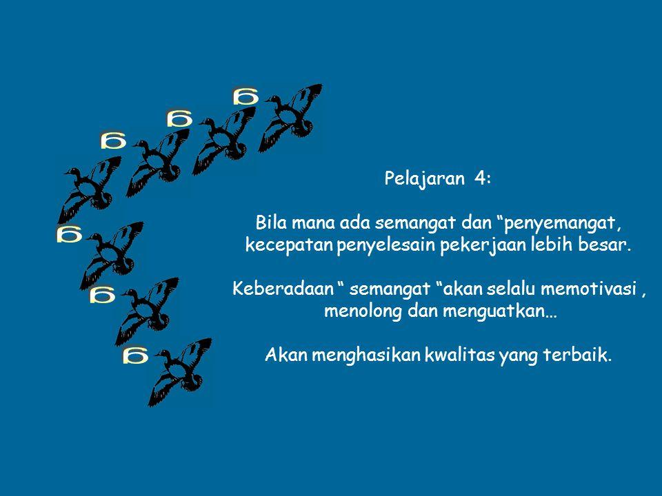 """Angsa terbang dalam formasi """"V"""" sambil ber """" kotek """" hal ini akan memberi semangat terbang 'Team leader"""" Juga dengan cara demikian mereka terbang deng"""