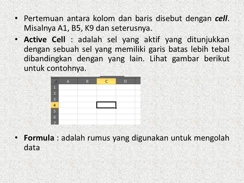Pertemuan antara kolom dan baris disebut dengan cell.