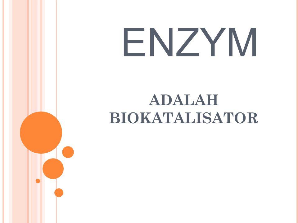 ENZYM ADALAH BIOKATALISATOR