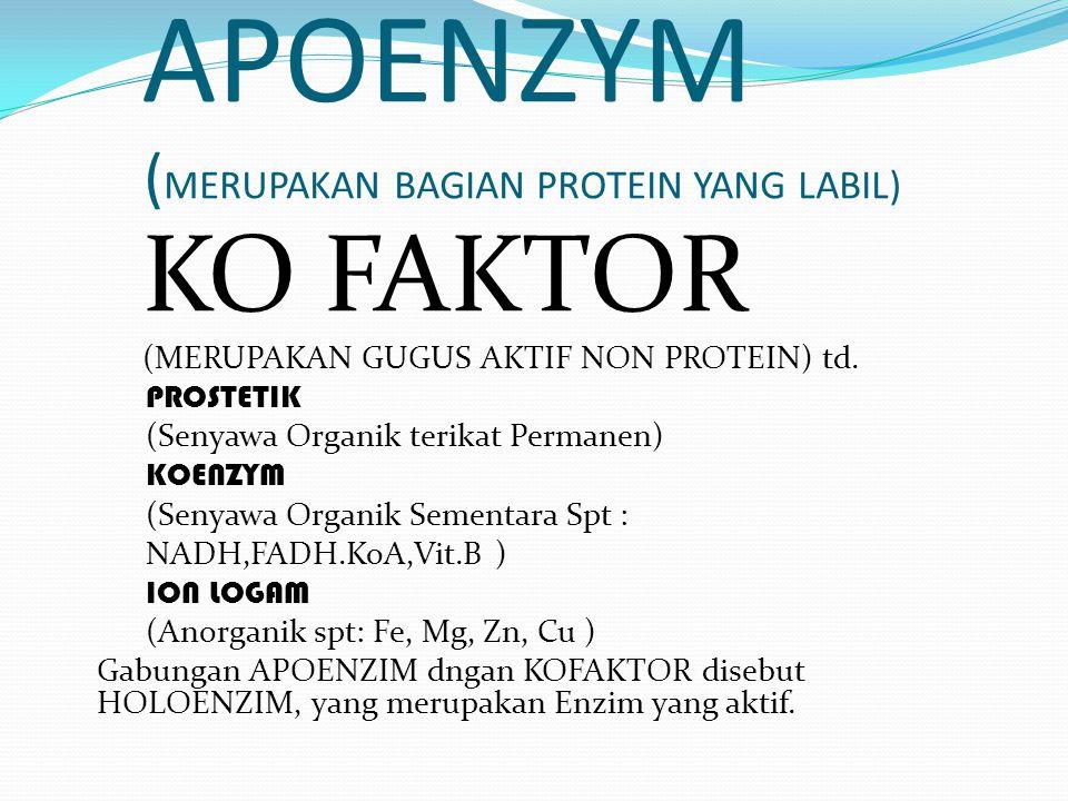 TERDIRI DARI 1. APOENZYM 2. KO FAKTOR -PROSTETIK -Ko Enzym -Ion Logam