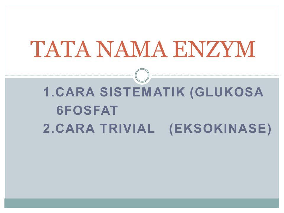 1.CARA SISTEMATIK (GLUKOSA 6FOSFAT 2.CARA TRIVIAL (EKSOKINASE) TATA NAMA ENZYM