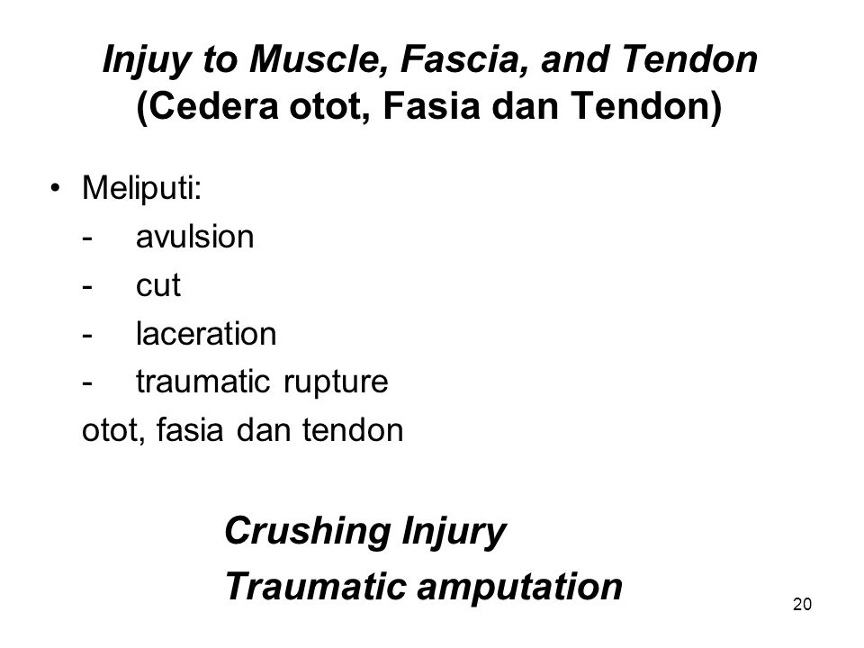 Injuy to Muscle, Fascia, and Tendon (Cedera otot, Fasia dan Tendon) Meliputi: -avulsion -cut -laceration -traumatic rupture otot, fasia dan tendon Cru