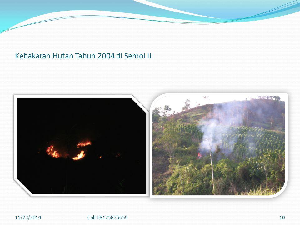 2. Kebakaran Permukaan (Surface fire) Api membakar bahan-bahan organik dan vegetasi di atas lantai hutan, yaitu seresah, tumbuhan bawah, anakan pohon