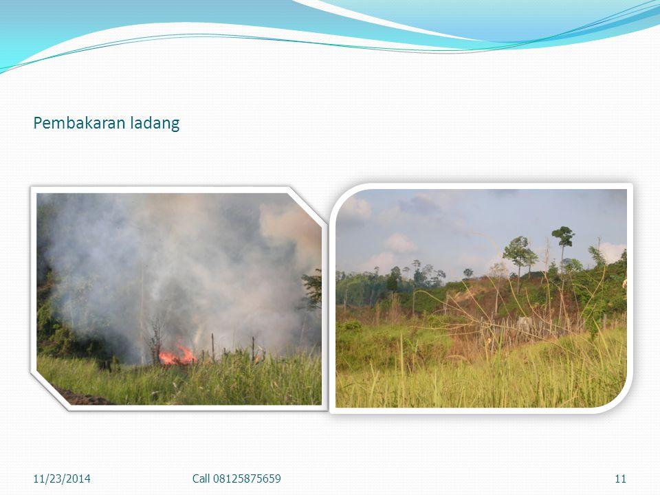 Kebakaran Hutan Tahun 2004 di Semoi II 11/23/2014Call 0812587565910