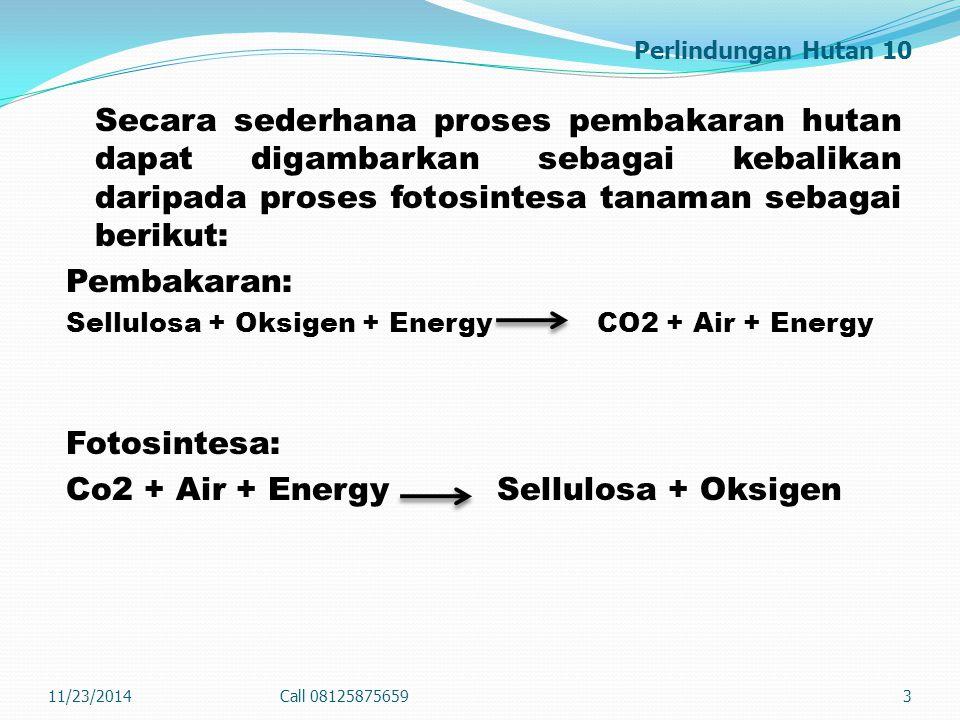 Perlindungan Hutan 10 Secara sederhana proses pembakaran hutan dapat digambarkan sebagai kebalikan daripada proses fotosintesa tanaman sebagai berikut: Pembakaran: Sellulosa + Oksigen + Energy CO2 + Air + Energy Fotosintesa: Co2 + Air + Energy Sellulosa + Oksigen 11/23/2014Call 081258756593