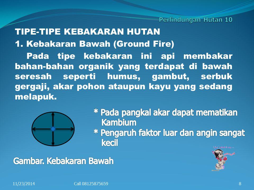 TIPE-TIPE KEBAKARAN HUTAN 1.