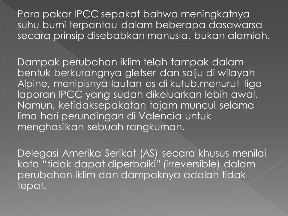 Para pakar IPCC sepakat bahwa meningkatnya suhu bumi terpantau dalam beberapa dasawarsa secara prinsip disebabkan manusia, bukan alamiah.
