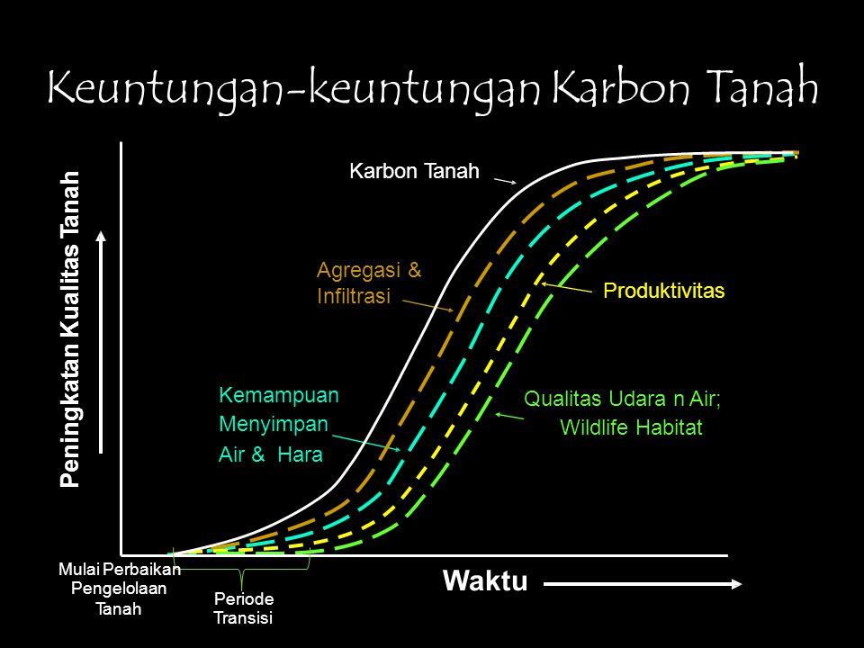 Keuntungan-keuntunganKarbon Tanah Produktivitas Infiltrasi Mulai Perbaikan Pengelolaan Tanah Waktu Periode Transisi Peningkatan Kualitas Tanah Karbon Tanah Agregasi & Kemampuan Qualitas Udara n Air; Menyimpan Wildlife Habitat Air & Hara