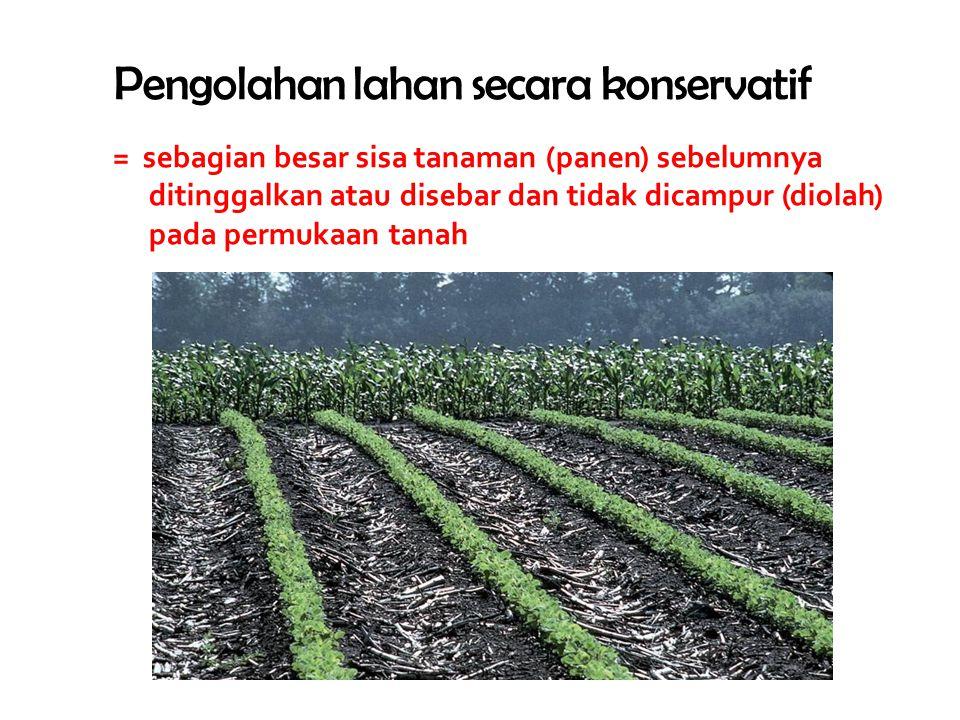 Pengolahan lahan secara konservatif = sebagian besar sisa tanaman (panen) sebelumnya ditinggalkan atau disebar dan tidak dicampur (diolah) pada permukaan tanah