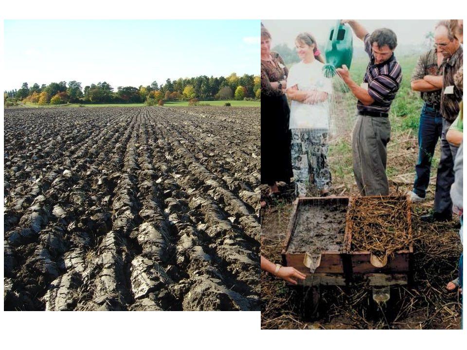 Pendekatan sistem juga berimplikasi pada upaya interdisiplin dan pendidikan Hal ini memerlukan tidak hanya input dari peneliti dari berbagai ilmu; tetapi juga dari petani, pekerja di pertanian, konsumen, pengambil kebijakan, produsen dan lainnya