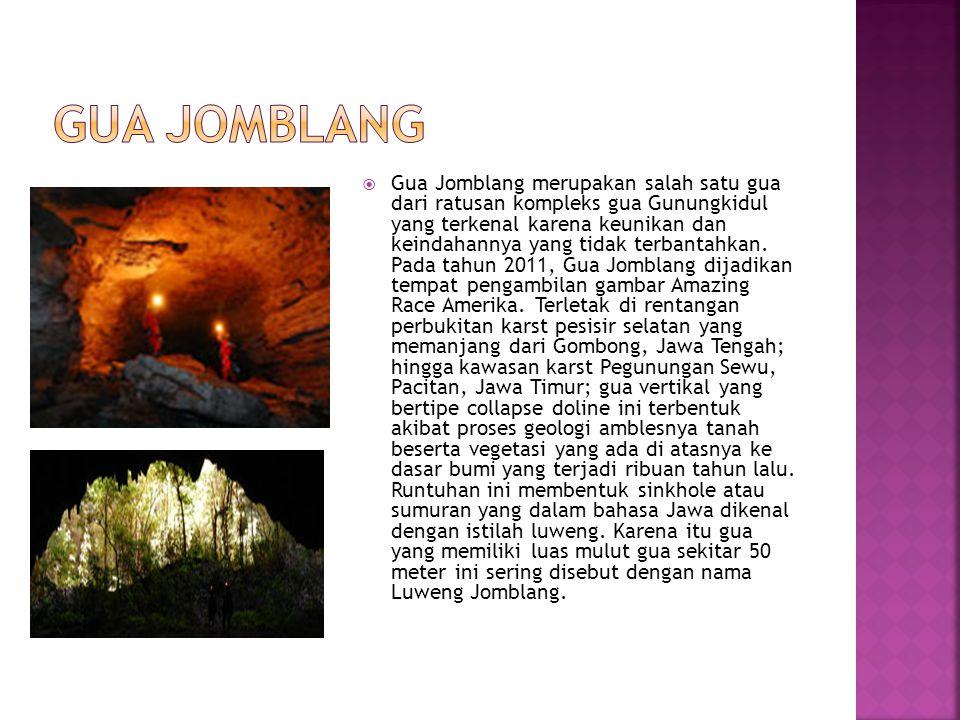  Gua Jomblang merupakan salah satu gua dari ratusan kompleks gua Gunungkidul yang terkenal karena keunikan dan keindahannya yang tidak terbantahkan.