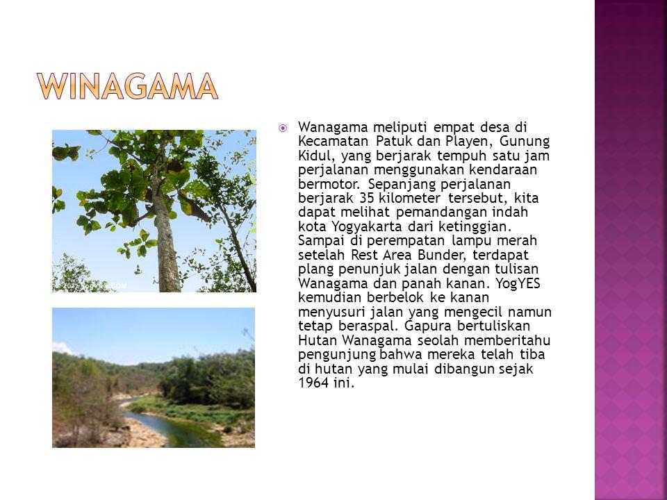  Wanagama meliputi empat desa di Kecamatan Patuk dan Playen, Gunung Kidul, yang berjarak tempuh satu jam perjalanan menggunakan kendaraan bermotor.