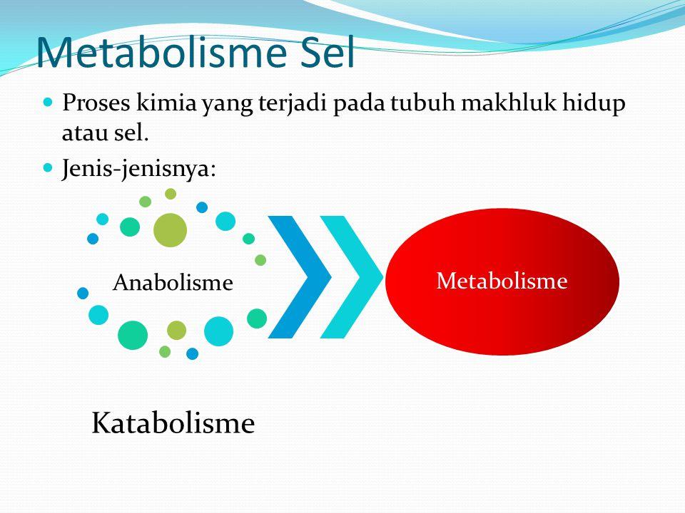 Metabolisme Sel Proses kimia yang terjadi pada tubuh makhluk hidup atau sel. Jenis-jenisnya: Anabolisme Katabolisme Metabolisme