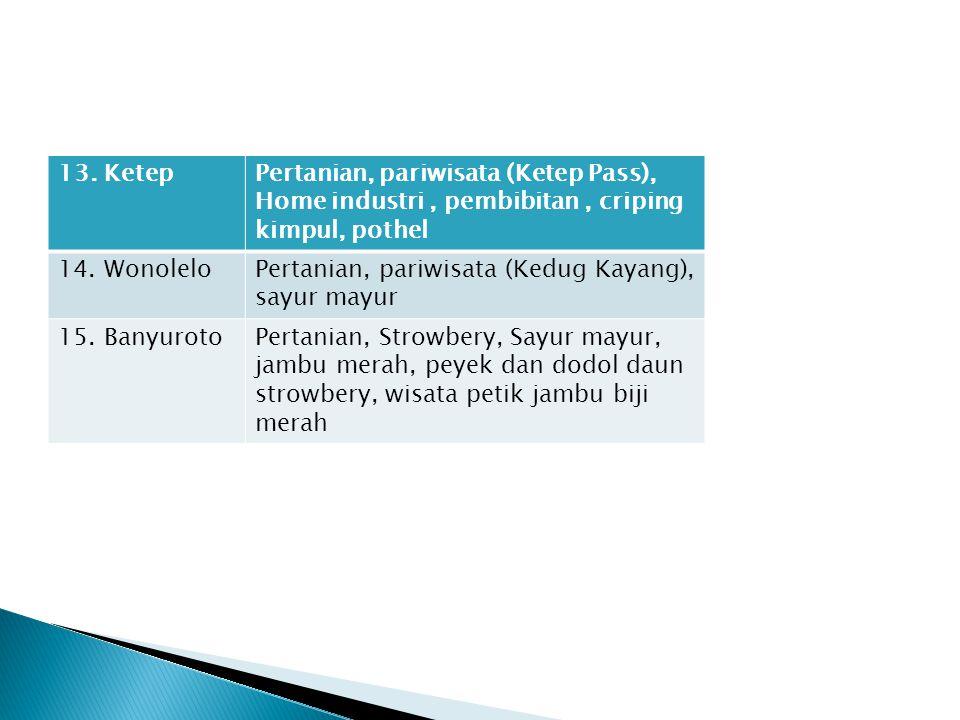 13. KetepPertanian, pariwisata (Ketep Pass), Home industri, pembibitan, criping kimpul, pothel 14. WonoleloPertanian, pariwisata (Kedug Kayang), sayur