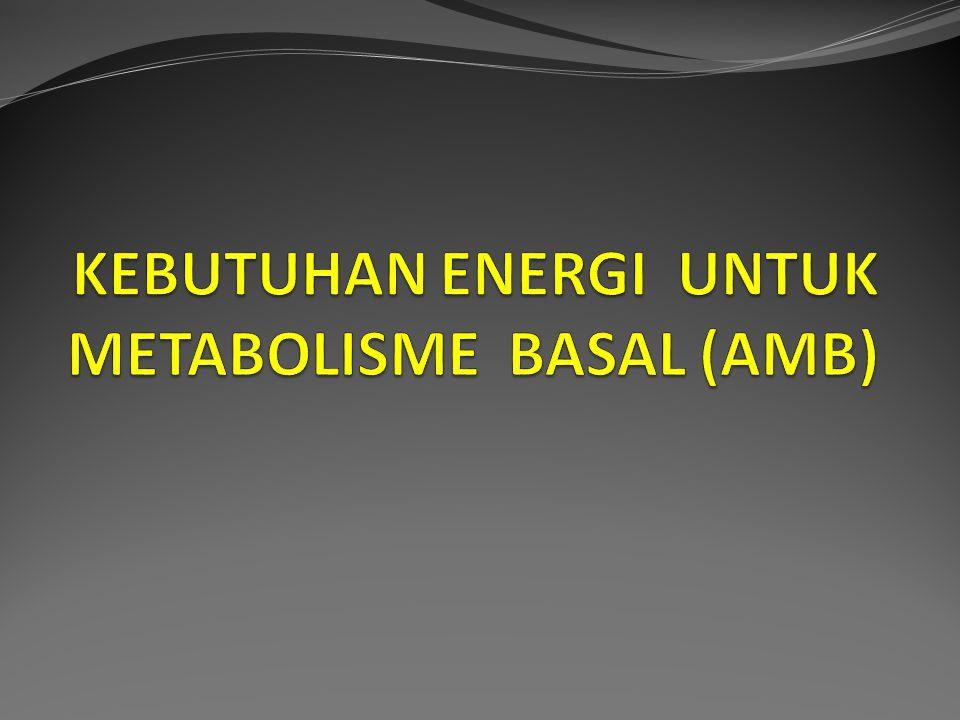 Angka metabolisme Basal adalah kebutuhan energi minimal yang dibutuhkan tubuh untuk menjalankan proses tubuh yang vital.