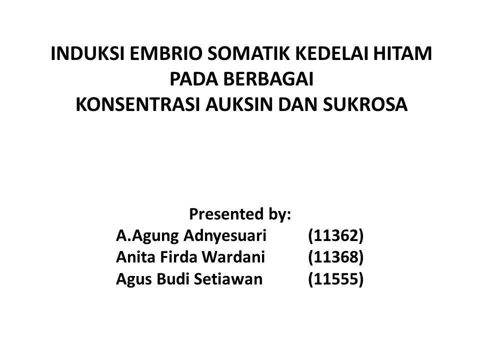 INDUKSI EMBRIO SOMATIK KEDELAI HITAM PADA BERBAGAI KONSENTRASI AUKSIN DAN SUKROSA Presented by: A.Agung Adnyesuari (11362) Anita Firda Wardani (11368)