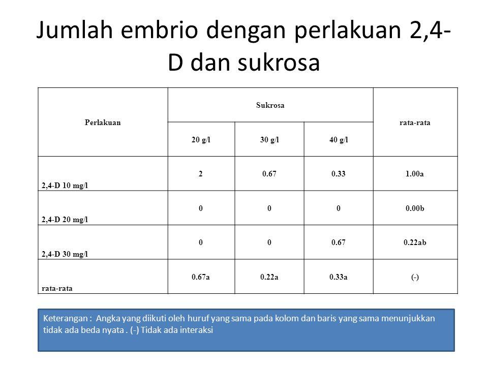 Persentase eksplan yang membentuk embrio dengan perlakuan 2,4-D dan sukrosa perlakuan Sukrosa rata-rata 20 g/l30 g/l40 g/l 2,4-D 10 mg/l 3015.001520a 2,4-D 20 mg/l 0000.00a 2,4-D 30 mg/l 00155ab rata-rata 10a5a10a(-) Keterangan : Angka yang diikuti oleh huruf yang sama pada kolom dan baris yang sama menunjukkan tidak ada beda nyata.