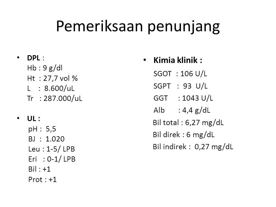 Pemeriksaan penunjang DPL : Hb : 9 g/dl Ht : 27,7 vol % L : 8.600/uL Tr : 287.000/uL UL : pH : 5,5 BJ : 1.020 Leu : 1-5/ LPB Eri : 0-1/ LPB Bil : +1 Prot : +1 Kimia klinik : SGOT : 106 U/L SGPT : 93 U/L GGT : 1043 U/L Alb : 4,4 g/dL Bil total : 6,27 mg/dL Bil direk : 6 mg/dL Bil indirek : 0,27 mg/dL