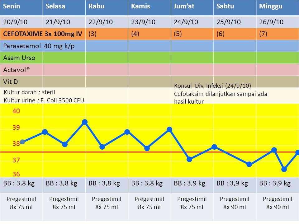 SeninSelasaRabuKamisJum'atSabtuMinggu 20/9/1021/9/1022/9/1023/9/1024/9/1025/9/1026/9/10 CEFOTAXIME 3x 100mg IV(3)(4)(5)(6)(7) Parasetamol 40 mg k/p Asam Urso Actavol® Vit D BB : 3,8 kg BB : 3,9 kg Pregestimil 8x 75 ml Pregestimil 8x 90 ml 36 37 38 39 40 Kultur darah : steril Kultur urine : E.
