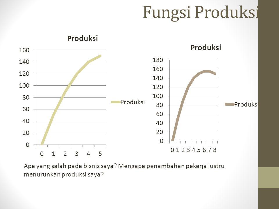 Fungsi Produksi Apa yang salah pada bisnis saya? Mengapa penambahan pekerja justru menurunkan produksi saya?