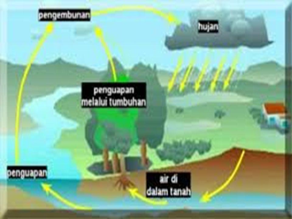 PROSES DAUR AIR 1.Air laut,sungai,danau menguap (evaporasi) ketika terkena panas matahari.Air di dalam tumbuhan juga menguap(transpirasi) 2.Uap air melayang-layang ke atas dan berubah menjadi empun (kondensasi)karena suhu diatas semakin rendah.
