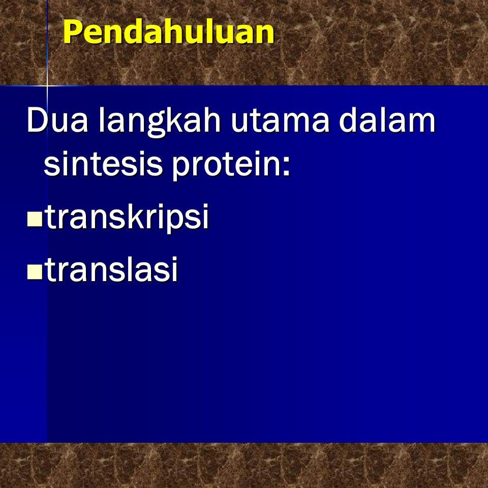 Pendahuluan Dua langkah utama dalam sintesis protein: transkripsi transkripsi translasi translasi
