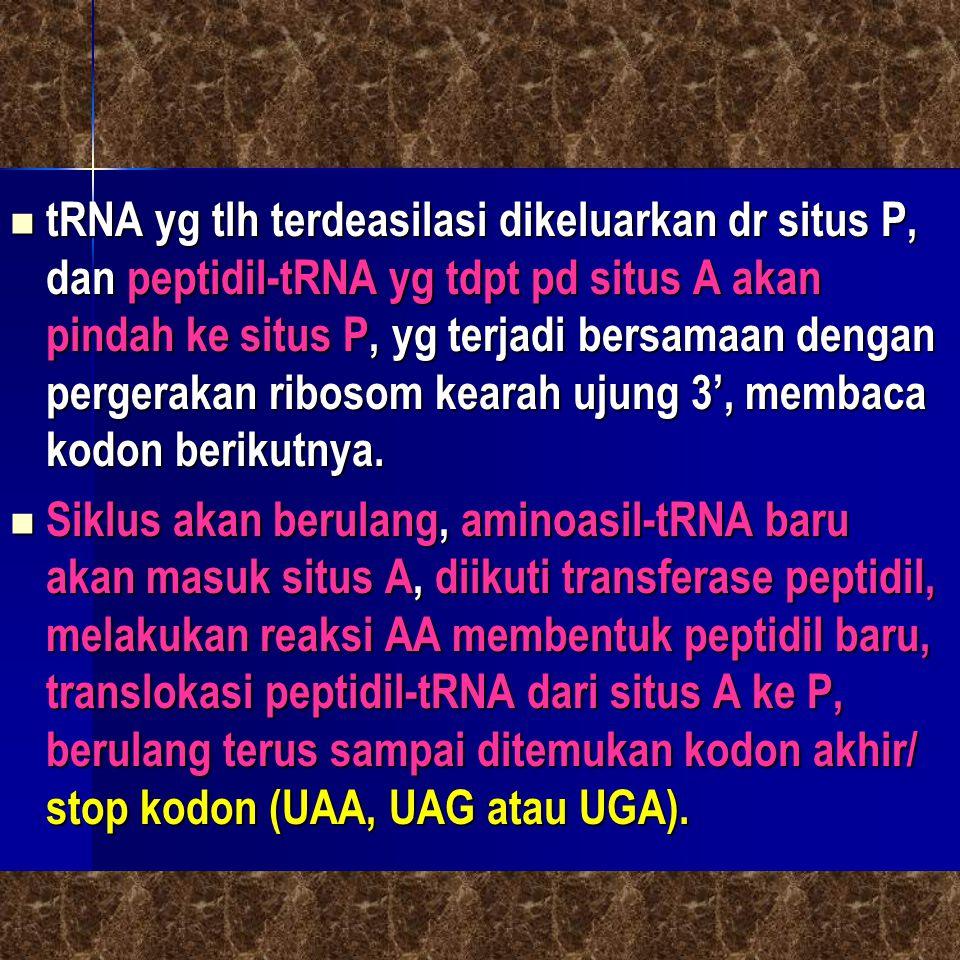 tRNA yg tlh terdeasilasi dikeluarkan dr situs P, dan peptidil-tRNA yg tdpt pd situs A akan pindah ke situs P, yg terjadi bersamaan dengan pergerakan r