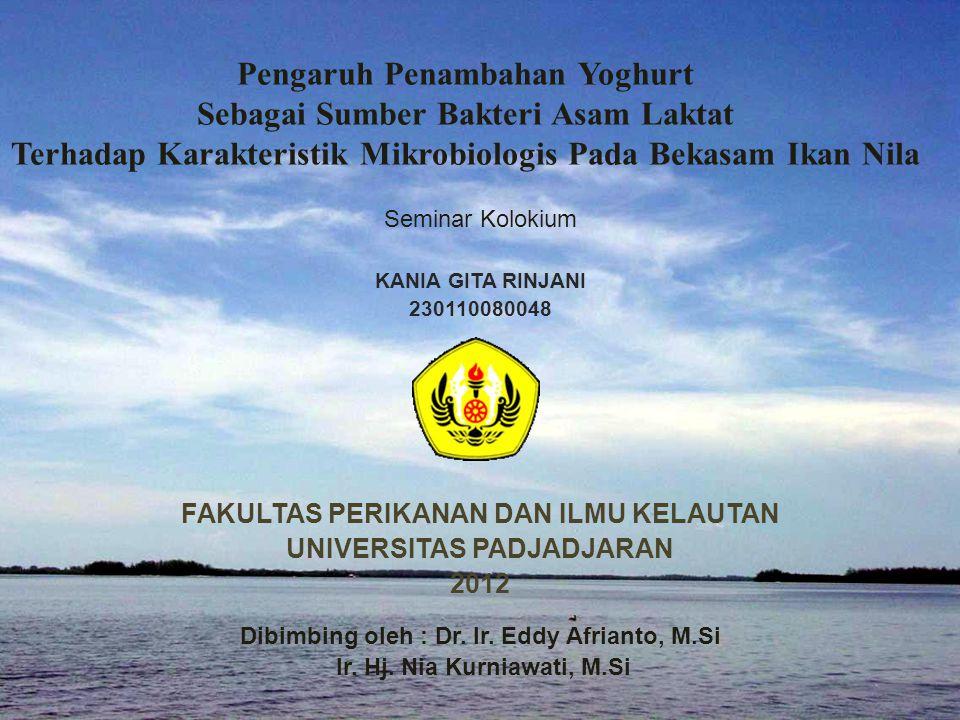 Pengaruh Penambahan Yoghurt Sebagai Sumber Bakteri Asam Laktat Terhadap Karakteristik Mikrobiologis Pada Bekasam Ikan Nila Seminar Kolokium KANIA GITA