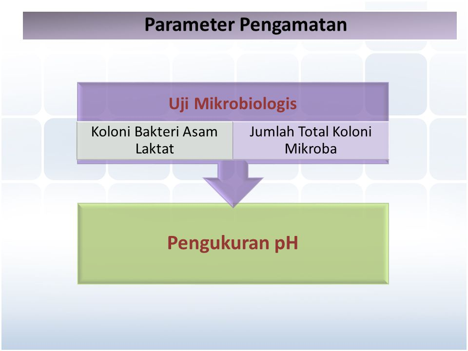 Parameter Pengamatan Pengukuran pH Uji Mikrobiologis Koloni Bakteri Asam Laktat Jumlah Total Koloni Mikroba