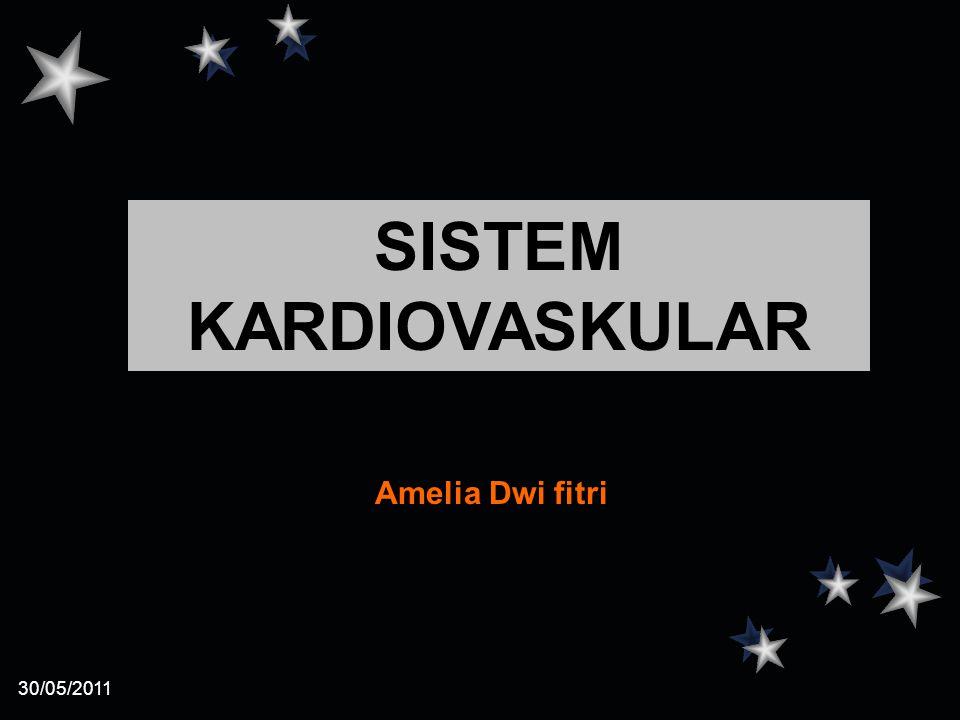 30/05/2011 Amelia Dwi fitri SISTEM KARDIOVASKULAR