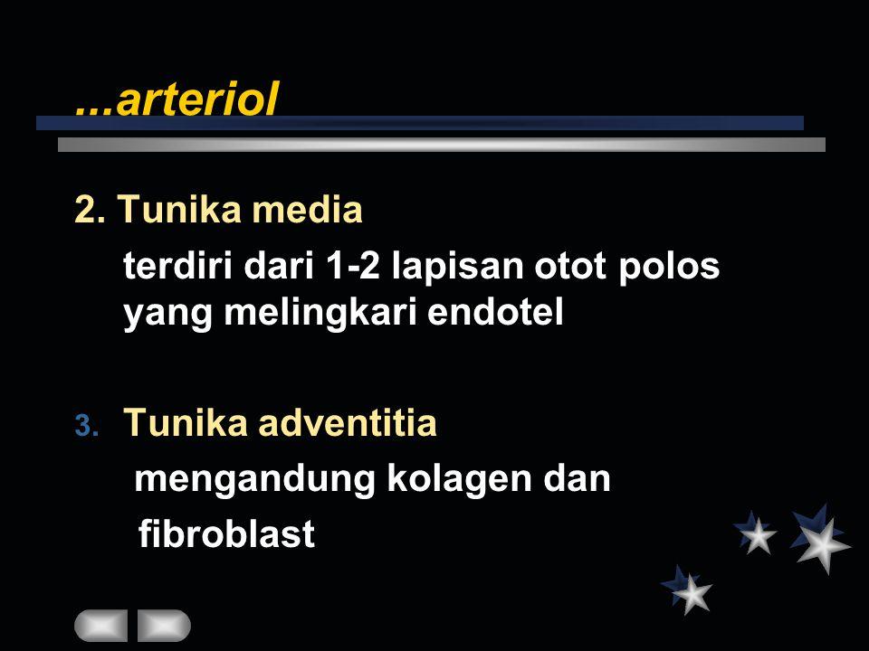 ...arteriol 2. Tunika media terdiri dari 1-2 lapisan otot polos yang melingkari endotel 3. Tunika adventitia mengandung kolagen dan fibroblast