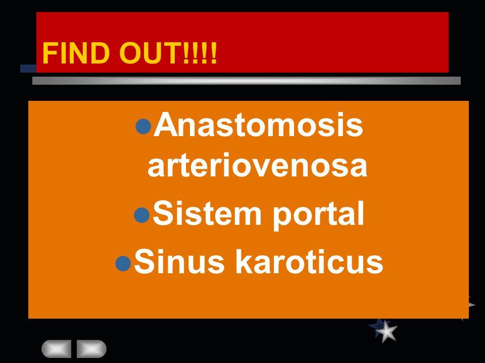 FIND OUT!!!! Anastomosis arteriovenosa Sistem portal Sinus karoticus
