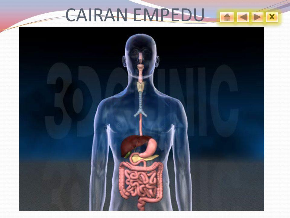 CAIRAN EMPEDU