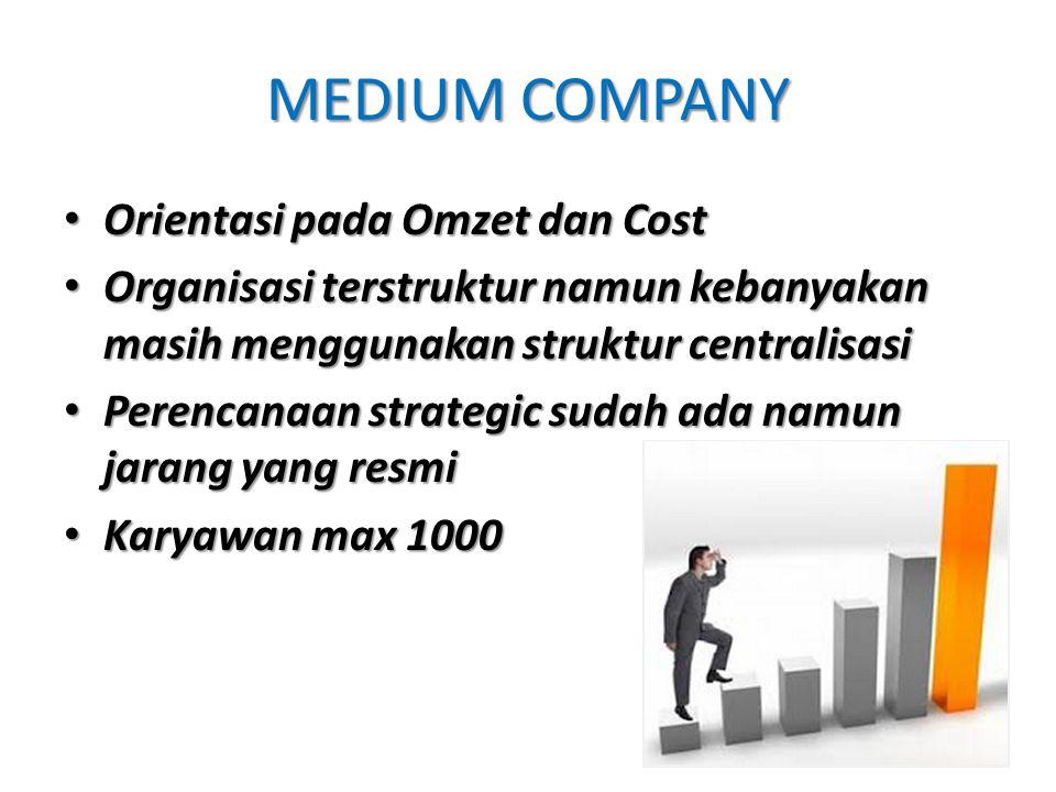 MEDIUM COMPANY Orientasi pada Omzet dan Cost Orientasi pada Omzet dan Cost Organisasi terstruktur namun kebanyakan masih menggunakan struktur centrali