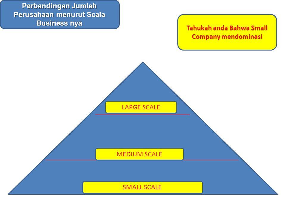 LARGE SCALE MEDIUM SCALE SMALL SCALE Perbandingan Jumlah Perusahaan menurut Scala Business nya Tahukah anda Bahwa Small Company mendominasi